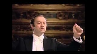 Mozart - Violin Concerto No. 1 KV. 207 (Kremer, Harnoncourt, VPO) FULL VIDEO