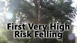 First Dangerous/High Risk/Deadly Tree Felling