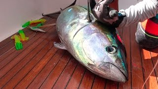 TUNA! Catch, Clean, Cook and EAT!!!! Gabriella's Quepos, Costa Rica
