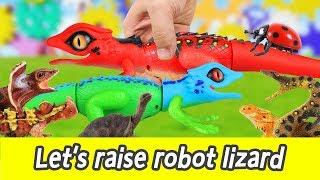 [EN] Let's raise robot lizard!! cocos animation, animals names for kids, collectaㅣCoCosToy