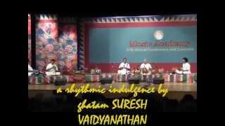 GHATAM Suresh Vaidyanathan - mRittikA vaibhavam Jan 1, 2014 at The Music Academy, Chennai