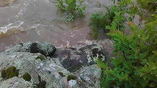 Millstream Gardens Raging River May 12, 2016 Reworked