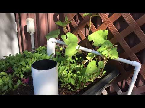 Basic Layout of 3 Aquaponic / Aquatic Systems - Part Two
