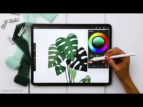Draw a Monstera Plant in Procreate
