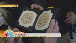 Color Blind Glasses Test