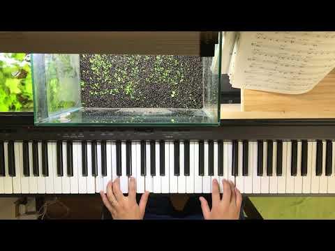 オールザシングユーアー ALL THE THING YOU ARE 簡単なことしかせずに弾く  アドリブなし(初心者) ジャズソロピアノ  黒本の曲を弾く