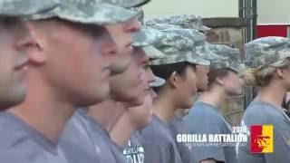 '2016 Military Appreciation Day - Gorilla Battalion