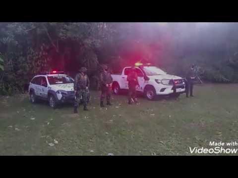 Polícia Ambiental faz operações na Semana do Meio Ambiente