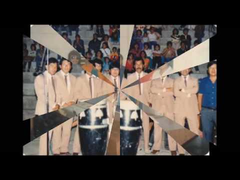 Miel de Abeja - Mientras te amo (Marco Yasila Ex armonia 10)