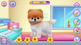 Boo - The World's Cutest Dog Android Gameplay