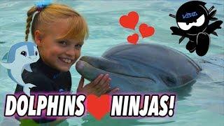 We Played and Swam with Dolphins (Bahamas) II Ninja Kidz TV