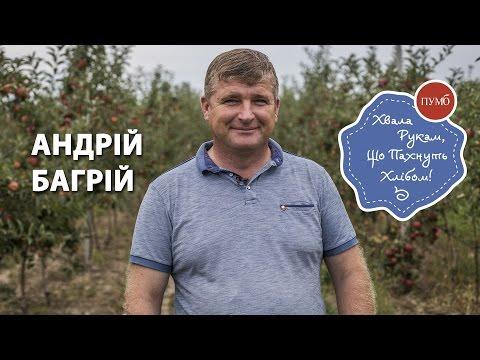 Хвала рукам, що пахнуть хлібом — Андрій Багрій (ВІДЕО)
