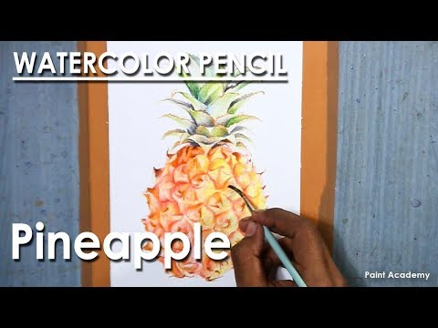 Watercolor Pencil Drawing : Pineapple | drawing & shading