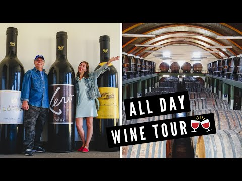 WINE TASTING in MENDOZA, ARGENTINA! 🍷 | Full Day Winery Tour of BODEGAS LÓPEZ in Maipú 🇦🇷