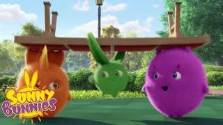 Videos For Kids   SUNNY BUNNIES - Showtime!   New Episode   Season 4   Cartoon