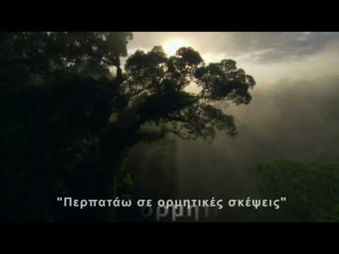 Eros Ramazotti ft. Anastacia - I Belong To You Lyrics with greek subs by NEOKfire