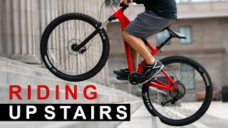 This Week I Learned to Cycle Up Stairs