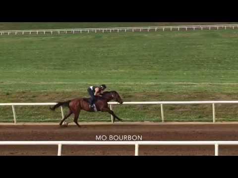 Mo Bourbon 6 10 16