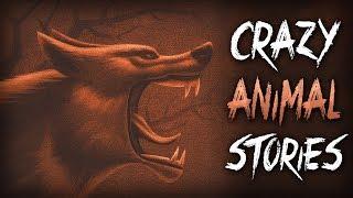 7 True Scary Animal Encounter Horror Stories
