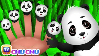 Finger Family Panda   ChuChu TV Animal Finger Family Songs & Nursery Rhymes For Children