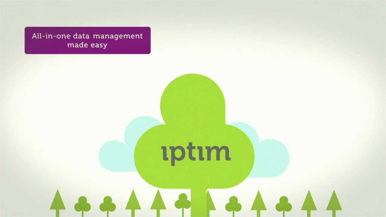 Integrated Planning for Timberland Management - IptimDss