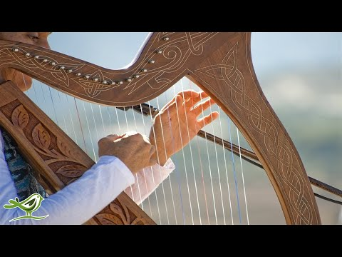 Relaxing Harp Music: Sleep Music, Meditation Music, Spa Music, Instrumental Background Music ★49