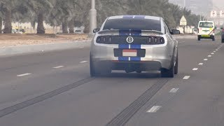 850HP Ford Shelby GT500 SVT from HELL!!