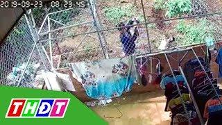 Camera ghi lại cảnh gã đàn ông trộm đồ lót phụ nữ | THDT