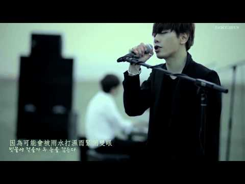 [HD中韓字] 朴孝信 (박효신) - 野生花 (야생화) Special Video
