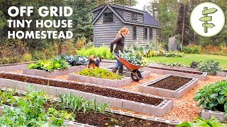 Living Off-Grid on a Tiny House Homestead for 6 Years