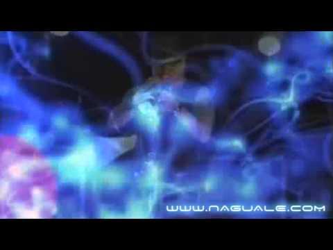 LIVE !!! - Naguale - Shake It