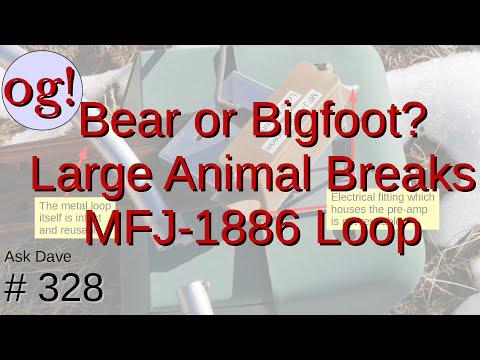 A Bear or Bigfoot? Large Animal vs MFJ-1886, Animal Wins (#328)