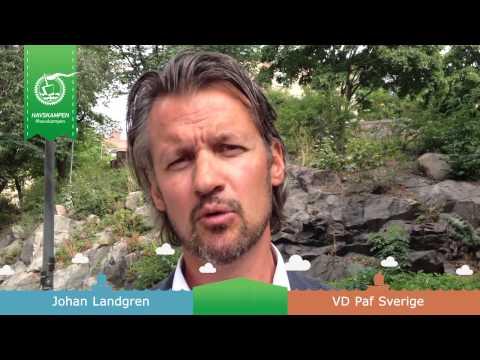 Johan Landgren ger lagen i #havskampen en riktigt utmaning!