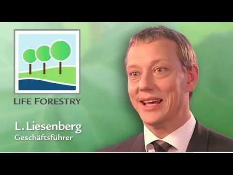 Life Forestry. Warum wachsen Teakbäume auf dieser Plantage so gut?
