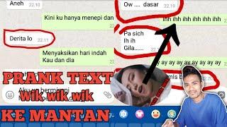 "PRANK TEXT KE MANTAN PAKE LAGU ""WIK WIK WIK AH AH AH"" (Version indo).  Kasian Lu.."