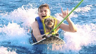 SURFING WITH MY DOG!!