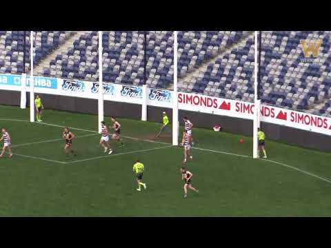 Round 13 highlights: Geelong vs Werribee
