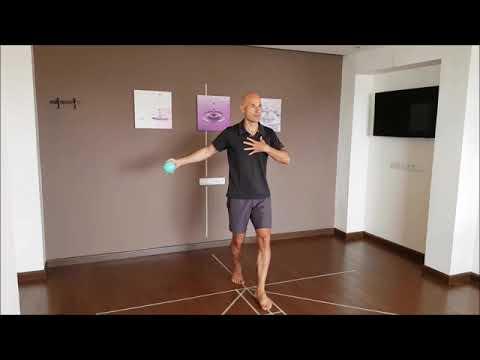 Vidéo de Frédéric Brigaud