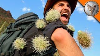 EXTREME Cactus Attack!
