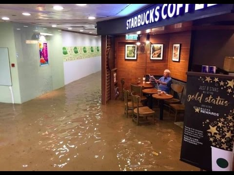 Man Reads the Newspaper in the Middle of a FLOODED STARBUCKS!   What's Trending Now