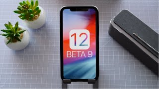 iOS 12 Beta 9 Released! Performance Boost + Changes!