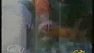 アオザメ6