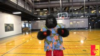 'College Mascot GUS - HALF-COURT SHOT