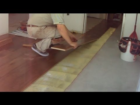 Walnut Hardwood Flooring Installation Transitioning