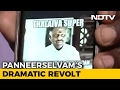 With revolt, Panneerselvam is having a bit of a social med..