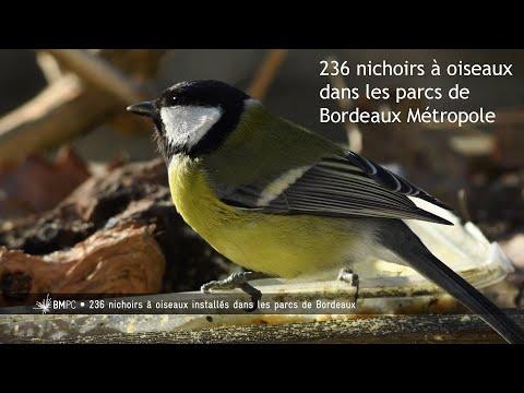 Les nichoirs à oiseaux dans les parcs de Bordeaux Métropole