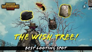 New Wish Tree Added To PUBG MOBILE - New Update! Best Looting Spot!