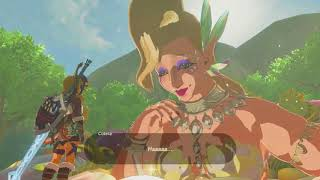 Things I wish I knew when starting Breath of the Wild