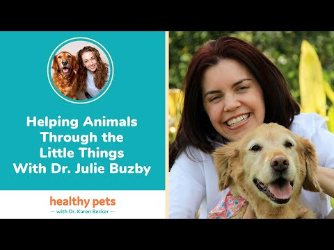 Helping Animals Through the Little Things With Dr. Julie Buzby