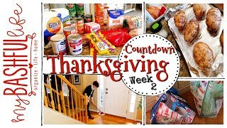 Thanksgiving Grocery Haul, Clean With Me & Recipe  Thanksgiving Countdown Wk 2